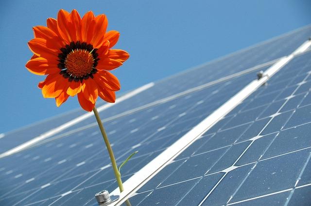 Photovoltaik- oder Solaranlagen Reinigung.jpg